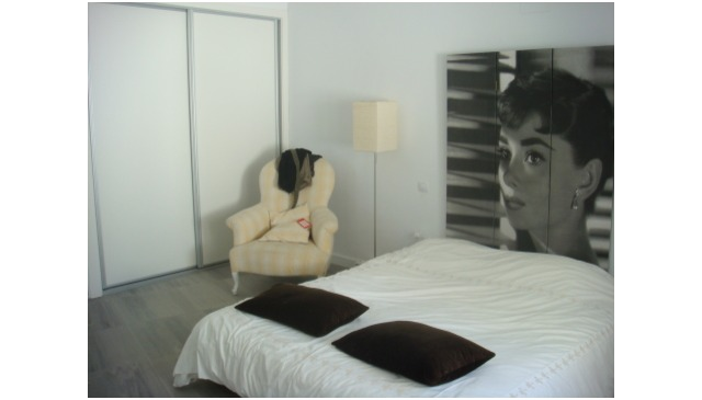 Luxury Modern Large House with private pool Madrid area
